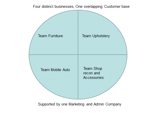 There's a graph showing 4 distinct businesses. Furniture, Upholstery, Mobile Auto, and Accessories.